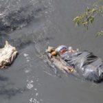 El interés legítimo para salvar los ríos salado y atoyac en Oaxaca
