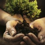 CIDH urge a proteger a defensoras y defensores de la tierra y el medio ambiente
