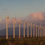 Atrae SCJN amparo sobre consulta previa a la instalación de energía eólica en Juchitán, Oaxaca