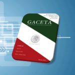 JULIO DE 2019 – Gaceta del Semanario Judicial de la Federación