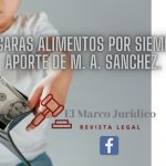 ¿Pagarás alimentos por siempre? | M. A. Sánchez